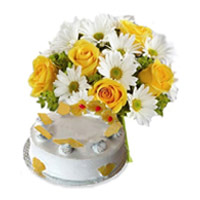 Newborn Cakes to Chennai, Flowers  to Chennai